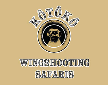 Kotoko Wingshooting Safaris